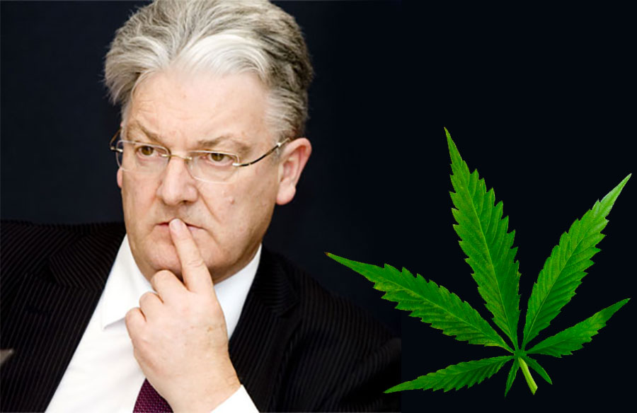 Peter Dunne weed.nz medical cannabis