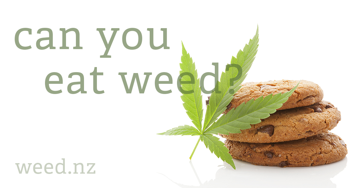 Is it safe to eat cannabis